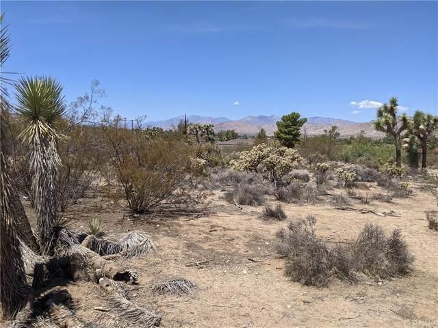 0 Bonita Trail, Yucca Valley, CA 92284 (#IV21154057) :: Zen Ziejewski and Team