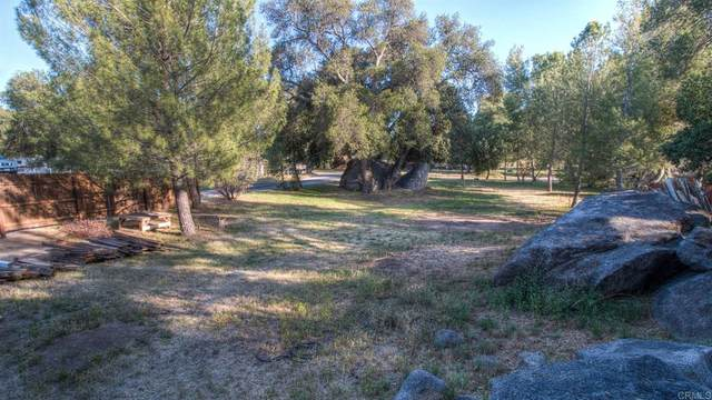 2526 Aster Drive, Campo, CA 91906 (#PTP2104988) :: Powerhouse Real Estate