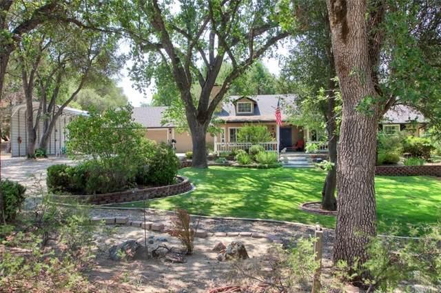 45496 Dillon Drive, Ahwahnee, CA 93601 (#FR21155955) :: A G Amaya Group Real Estate