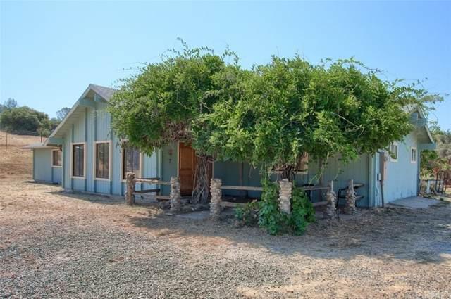 46888 Chukchansi Road, Coarsegold, CA 93614 (#FR21157603) :: A G Amaya Group Real Estate