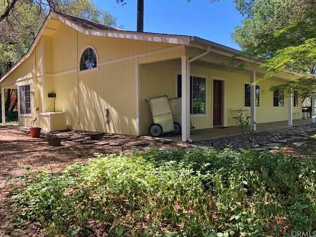 33337 Gold Nugget Court, Coarsegold, CA 93614 (#FR21158282) :: A|G Amaya Group Real Estate