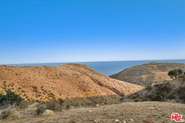 2909 Sequit Drive, Malibu, CA 90265 (#21760252) :: The Miller Group