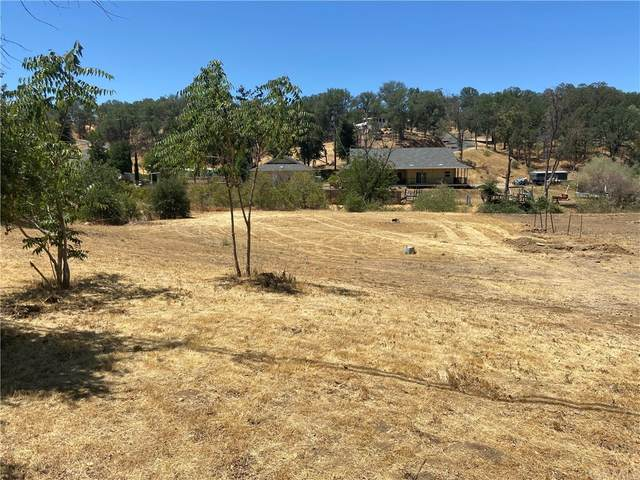 9383 Quarterhorse Lane, Lower Lake, CA 95457 (#LC21158357) :: Zutila, Inc.