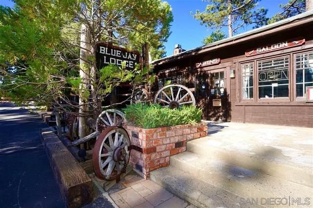 10600 Sunrise Highway, Mount Laguna, CA 91948 (#210020424) :: Latrice Deluna Homes