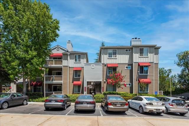 250 Santa Fe Terrace #104, Sunnyvale, CA 94085 (#ML81853570) :: Eight Luxe Homes