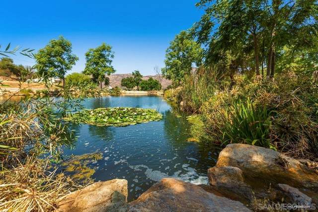 15023 El Monte Road, Lakeside, CA 92040 (#210020496) :: Realty ONE Group Empire