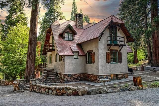 28832 Sycamore Drive, Lake Arrowhead, CA 92385 (#EV21159714) :: Latrice Deluna Homes