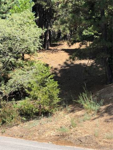 31306 Easy Street, Running Springs, CA 92382 (#EV21159990) :: Robyn Icenhower & Associates