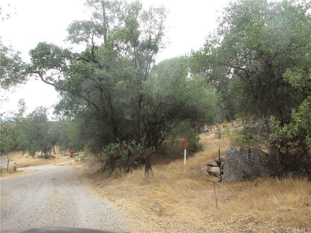 0 Italian Creek Road, Mariposa, CA 95338 (#MC21160113) :: Team Forss Realty Group