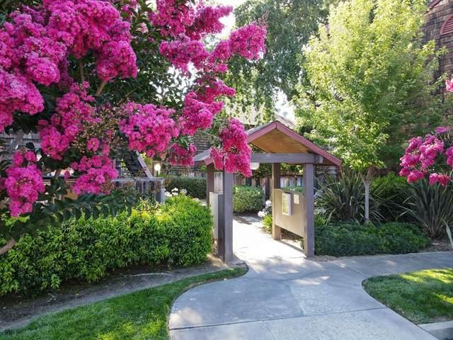 1555 Hecker Pass Road H201, Gilroy, CA 95020 (#ML81852694) :: Zutila, Inc.