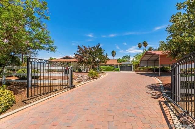27510 Big Springs Ranch Road, Hemet, CA 92544 (#210020578) :: Realty ONE Group Empire