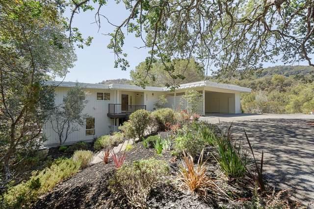 24612 Olive Tree Ln, Los Altos Hills, CA 94024 (#ML81852656) :: Jett Real Estate Group