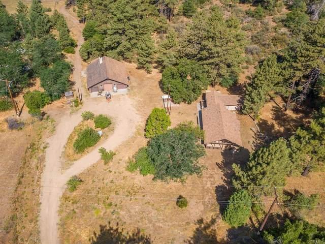 33715 Morris Ranch Road, Mount Laguna, CA 91948 (#NDP2108523) :: Doherty Real Estate Group