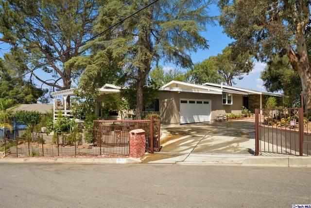 11011 Allegheny Street, Sun Valley, CA 91352 (#320006987) :: Latrice Deluna Homes