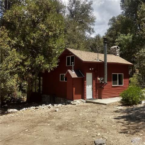 9249 Corral Road, Forest Falls, CA 92133 (#EV21161315) :: Robyn Icenhower & Associates