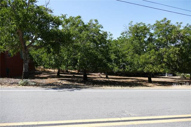 3195 Marina View Drive, Kelseyville, CA 95451 (#LC21161421) :: Jett Real Estate Group