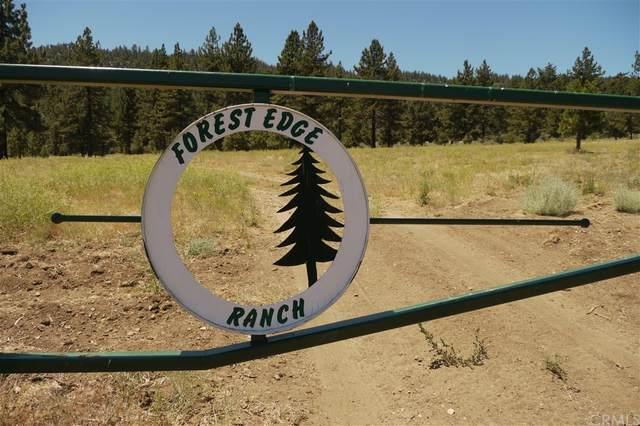 10878 Forest Edge Lane, Frazier Park, CA 93225 (#OC21161461) :: The Kohler Group