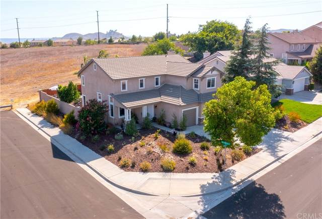 31103 Bonsai Circle, Winchester, CA 92596 (#SW21161643) :: The Laffins Real Estate Team