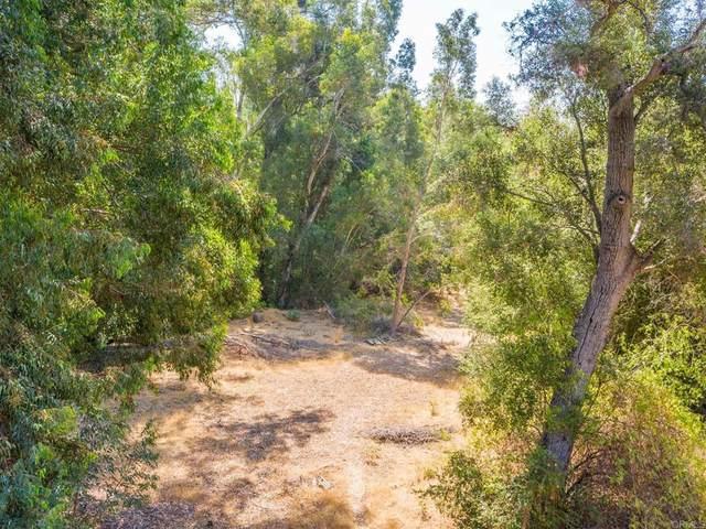 14044 Fernbrook Drive, Ramona, CA 92065 (#NDP2108599) :: Eight Luxe Homes
