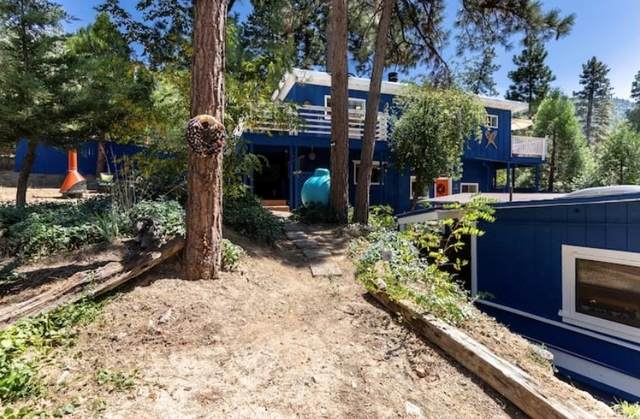 55275 S Circle Drive, Idyllwild, CA 92549 (#OC21159106) :: Doherty Real Estate Group