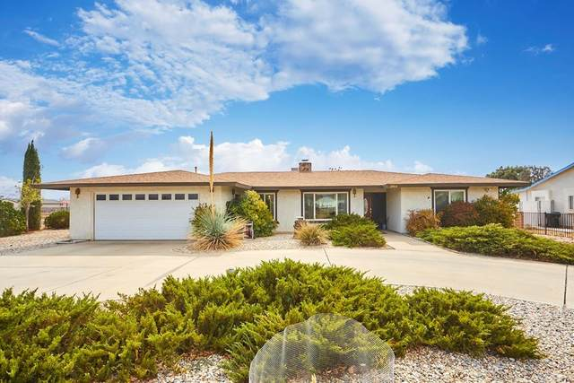 10912 Merino Avenue, Apple Valley, CA 92308 (#PTP2105206) :: The Costantino Group | Cal American Homes and Realty