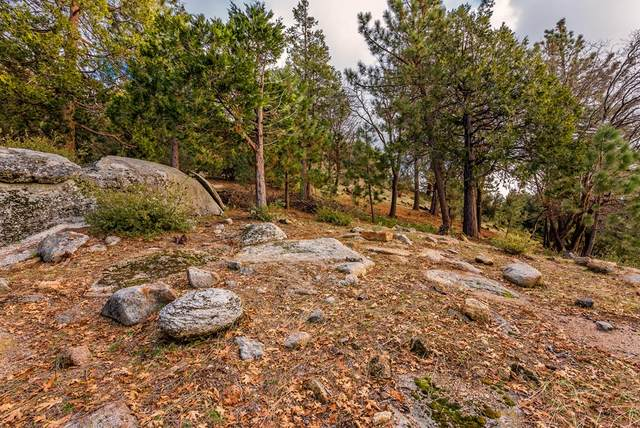 25450 Norwood Drive, Idyllwild, CA 92549 (#219065277DA) :: The Marelly Group | Sentry Residential