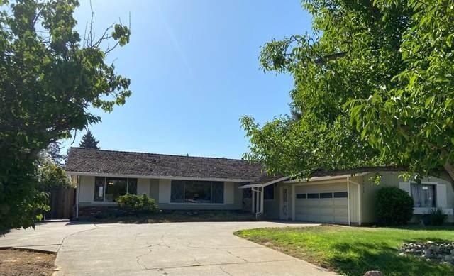 13621 Old Tree Way, Saratoga, CA 95070 (#ML81855222) :: RE/MAX Masters