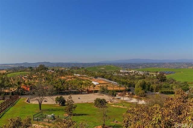 31959 Via Ararat Drive, Bonsall, CA 92003 (#NDP2108647) :: Powerhouse Real Estate