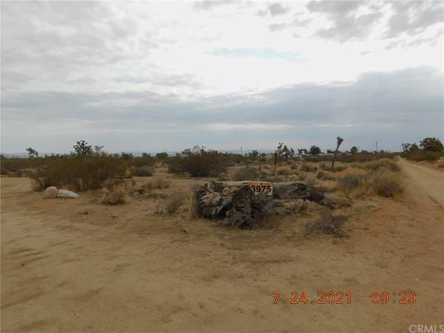 3975 Condalia Avenue, Yucca Valley, CA 92284 (#JT21162323) :: Millman Team