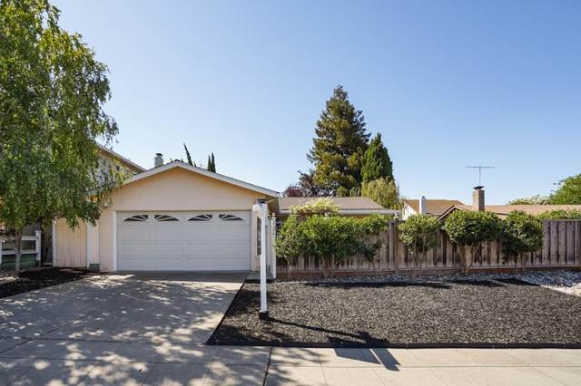 2134 Seacliff Drive, Milpitas, CA 95035 (#ML81855281) :: Steele Canyon Realty