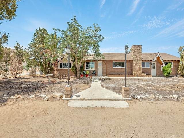 41521 20th Street W, Palmdale, CA 93551 (#SR21162805) :: Eight Luxe Homes
