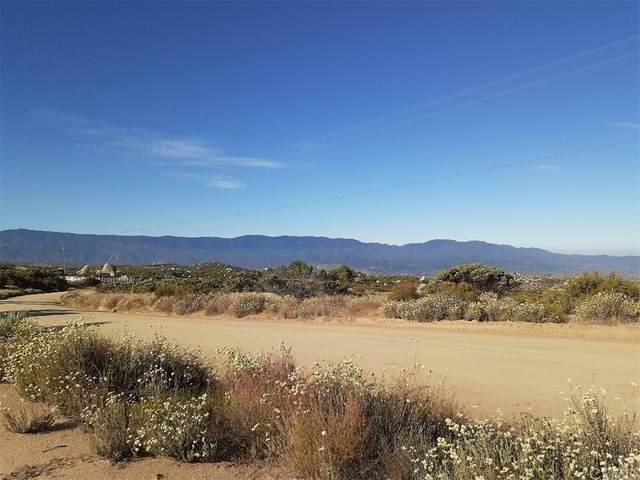 40100 Crazy Horse Canyon Road, Aguanga, CA 92536 (#SW21162900) :: Veronica Encinas Team