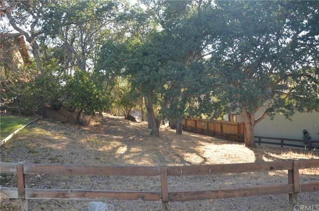 5003 Pretty Doe Lane, Paso Robles, CA 93446 (#NS21162170) :: Swack Real Estate Group | Keller Williams Realty Central Coast