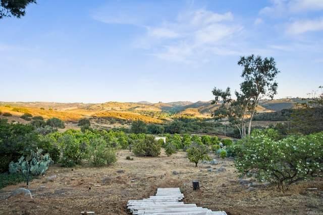 11138 Calle Oro Verde, Valley Center, CA 92082 (#NDP2108677) :: Zutila, Inc.