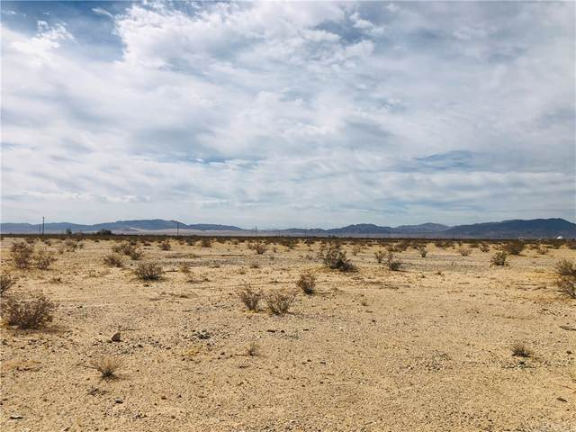 5 Indian Trail, 29 Palms, CA 92277 (#JT21163094) :: Rogers Realty Group/Berkshire Hathaway HomeServices California Properties