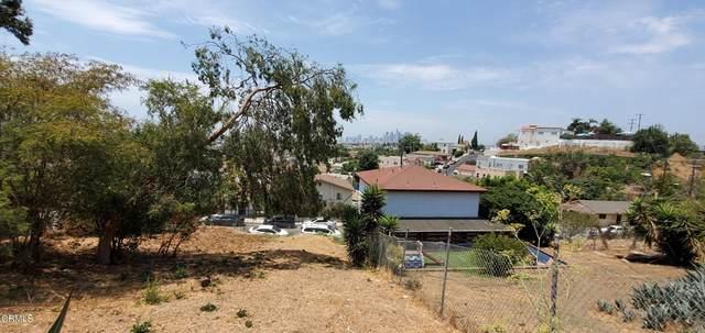 1134 36 N Alma Avenue, City Terrace, CA 90063 (#P1-5897) :: Mark Nazzal Real Estate Group