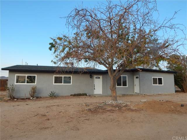 10523 Chipmunk Road, Apple Valley, CA 92308 (#CV21163828) :: McKee Real Estate Group Powered By Realty Masters & Associates
