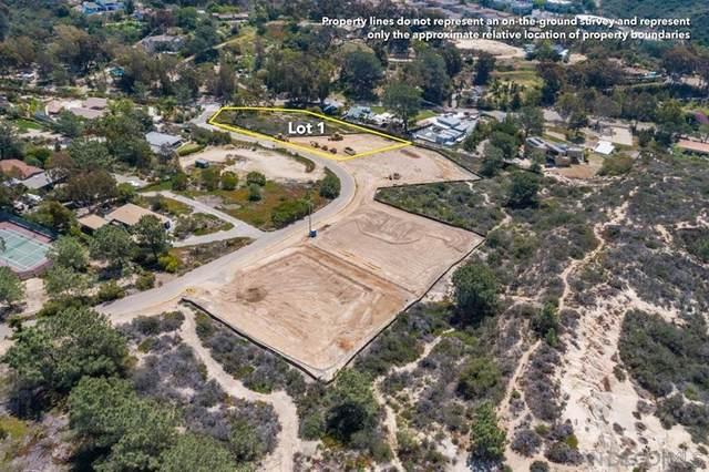 1 Via Del Mar, San Diego, CA 92130 (#210021123) :: Mark Nazzal Real Estate Group
