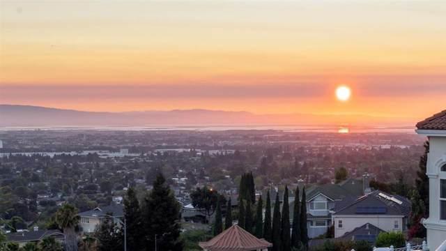 3490 Sweigert Road, San Jose, CA 95132 (#ML81855541) :: Blake Cory Home Selling Team