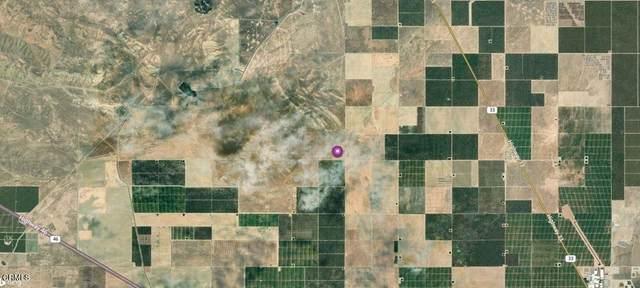 0 No Site Address, Lost Hills, CA 93249 (#V1-7401) :: The Kohler Group