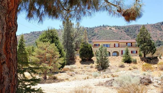 46837 Pine Meadow Road, Lake Hughes, CA 93532 (#SR21165059) :: Robyn Icenhower & Associates