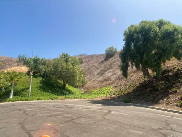 0 Little Canyon Ln, Yorba Linda, CA 92886 (#OC21164117) :: Zutila, Inc.