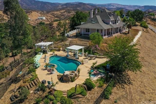 33581 Chrisco Street, Agua Dulce, CA 91390 (#SR21165471) :: Steele Canyon Realty