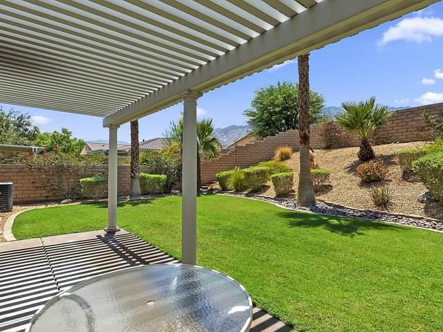 3555 Cliffrose Trail, Palm Springs, CA 92262 (#219065442DA) :: Compass