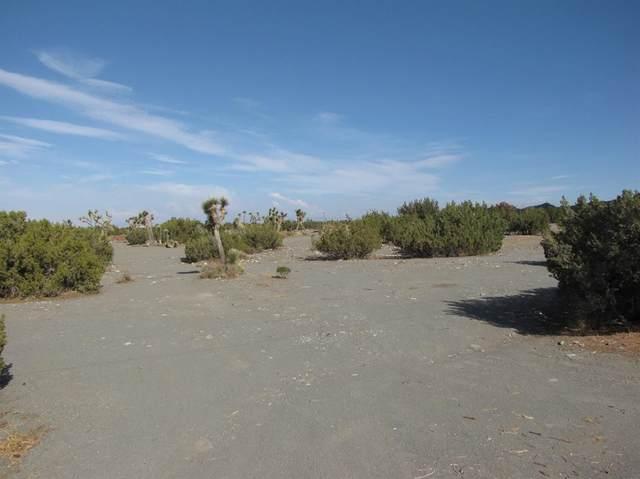 0 Phelan Road, Pinon Hills, CA 92372 (#537709) :: Hart Coastal Group