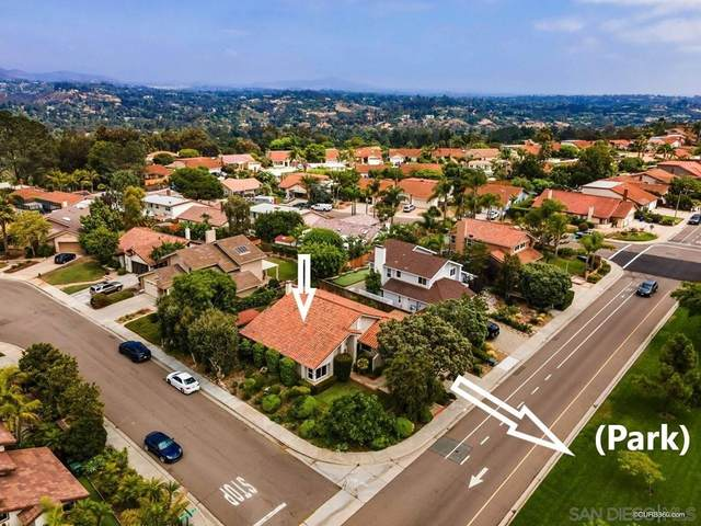 415 Willowspring Dr N, Encinitas, CA 92024 (#210021317) :: Eight Luxe Homes