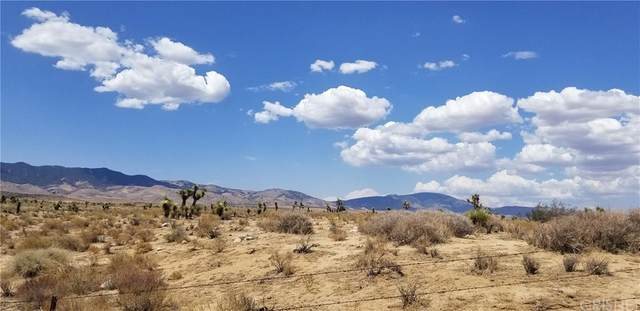 0 245TH ST W, Rosamond, CA 93036 (#SR21164881) :: Doherty Real Estate Group
