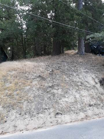 791 Berne Drive, Crestline, CA 92325 (#EV21163771) :: Doherty Real Estate Group