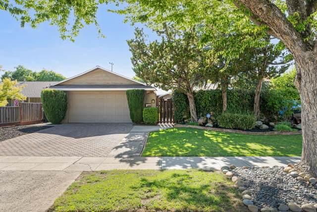 5025 Bel Canto Drive, San Jose, CA 95124 (#ML81855817) :: Bathurst Coastal Properties