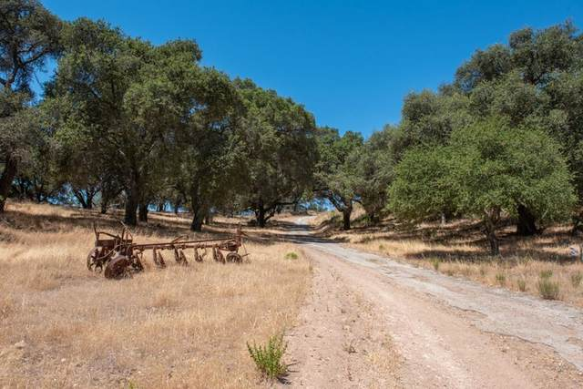 47292 Arroyo Seco Road, Greenfield, CA 93927 (#ML81855776) :: First Team Real Estate